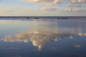 cropped-cropped-Waddenzee-Wiep-Terpstra1.jpg